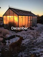 Energi og glæde hele vinterhalvåret: December