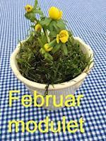 Vintertræthed hele vinterhalvåret: Februar