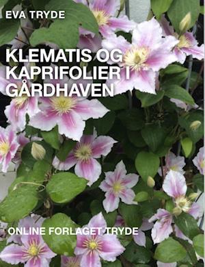 KLEMATIS OG KAPRIFOLIER I GÅRDHAVEN